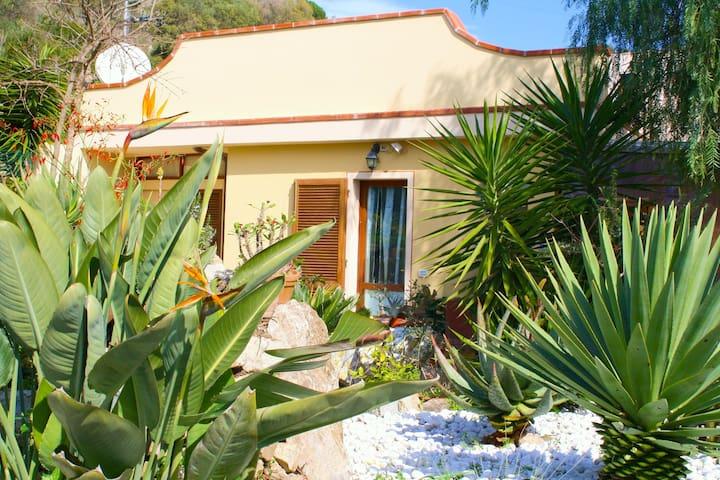 Isola d'Elba - bellissima casa in campagna - Campo nell'Elba - House
