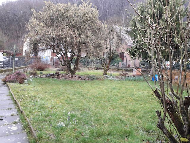 1 1/3 Zimmer mit eigenem Bad,Scheune,Garten in Wg