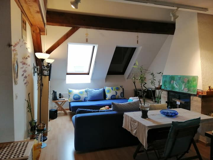Loft with 3 full bedroom and 1 Gb/s Internet