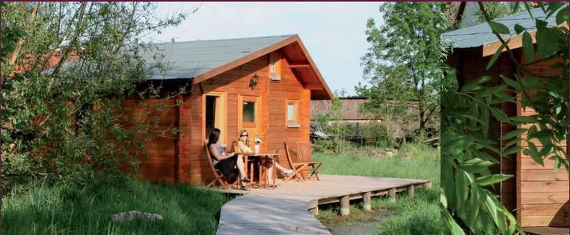 Ferienhaus Sonnenhof - Holzhaus mit Südterrasse