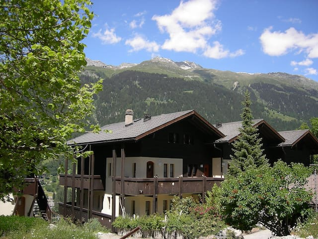 Apartment Aragon for 4 persons in Ernen