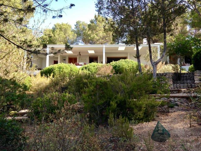 Villa tranquila en Santa Gertrudis - Santa Eulària des Riu - Villa