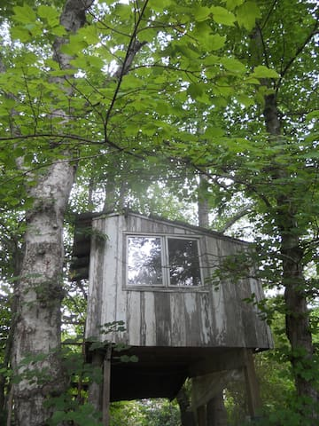 TREEHOUSE! Support an Organic Farmer! Have Fun! - Candler - Rumah Pohon