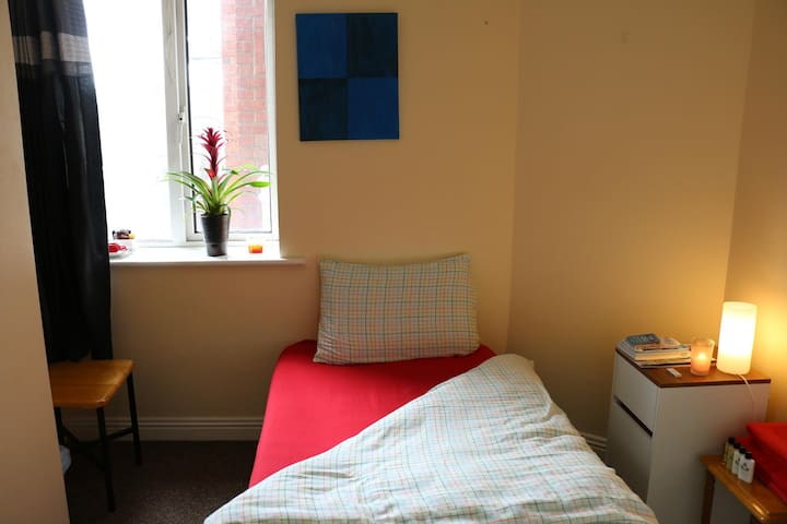 Nice sized single room /city centre