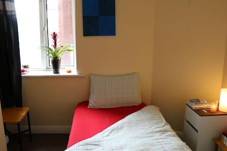Nice sized single room /city centre - Dublin - Leilighet