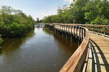 Robinson Preserve - A great places to walk, run, bike or kayak.  There's even a tower with a great view of Tampa Bay.