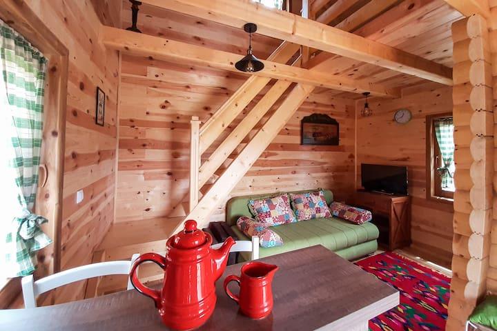 Sunny Hill Cabin Kolasin/Cabin 3