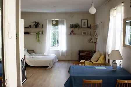 A cosy studio flat in a beautiful Kassisaba area - Tallinn