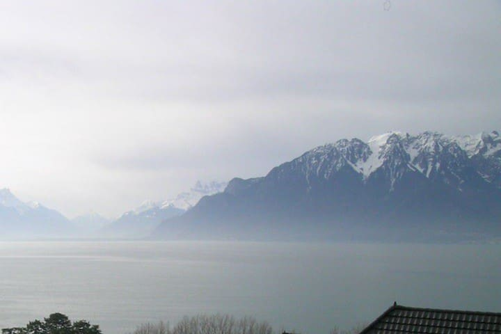 Nice Vevey studio - Vevey - Appartement