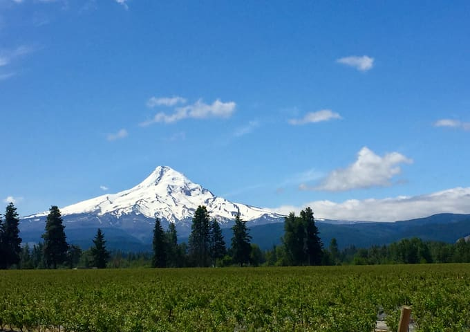 The Yetti Hood River/ Parkdale Paradise