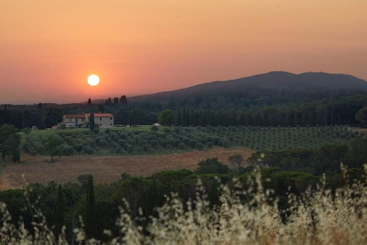Double Room in an Agrotourism in Chianti-P
