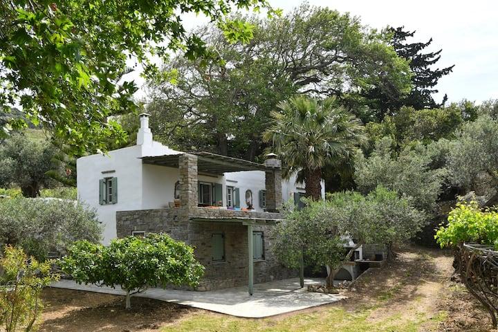 Villa Ekavi, private house close to Kite Surf spot