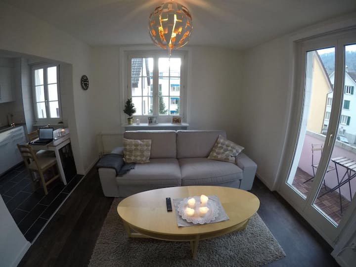 Large 2 BR apartment near city center and river