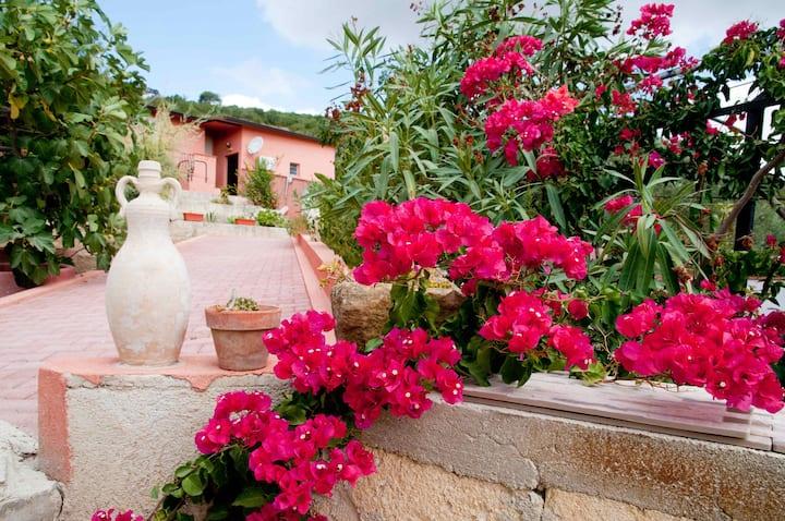 Casa xVacanze VILLA ANGELA(SICILIA)