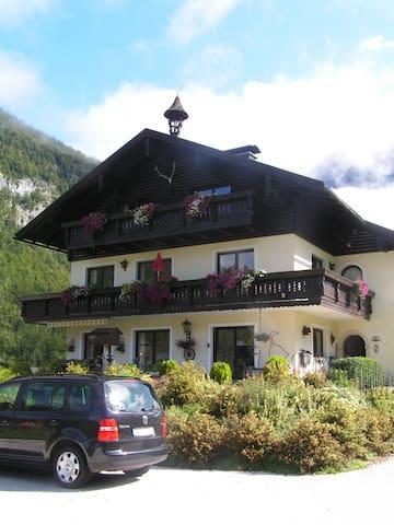Suite Krippenstein - Obertraun - 其它