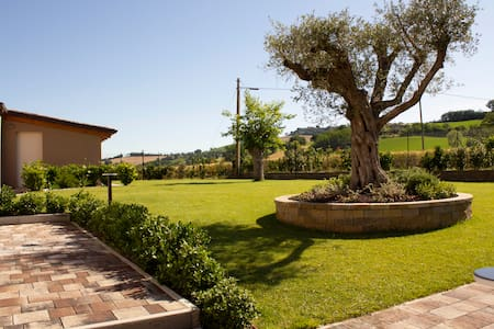 Villa San Rocco marche country house b&b viola