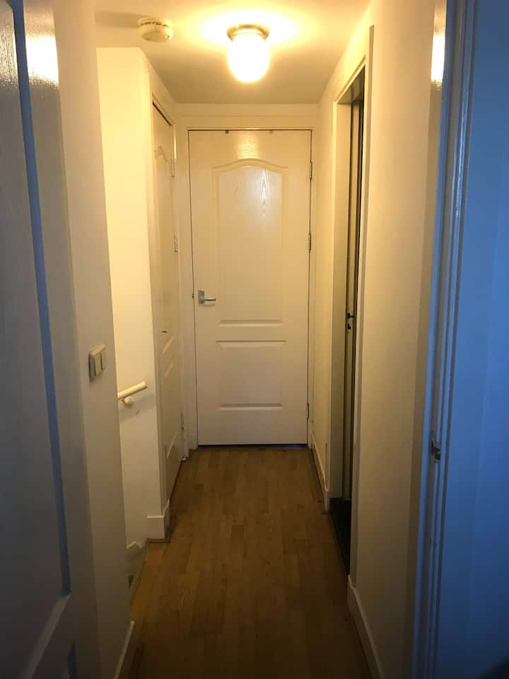 Hotspot apartment in Amsterdam