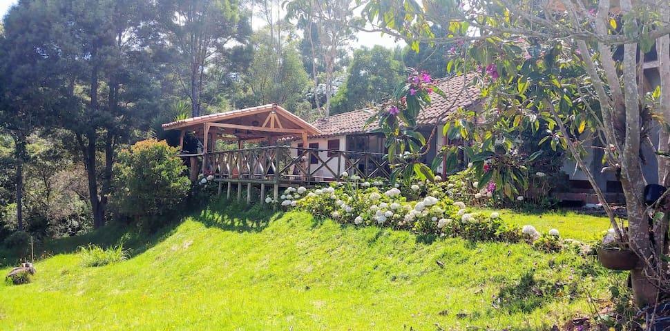 Cozy Cabana on a gorgeous finca in Santa Elena