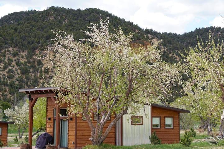 Apple Hollow Tiny House #2