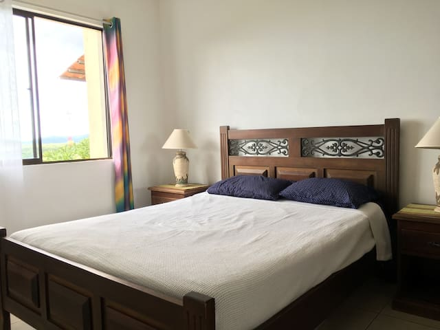 OceanView Apt, Queen/2 singles, 450m of the beach - Tamarindo - Apartment
