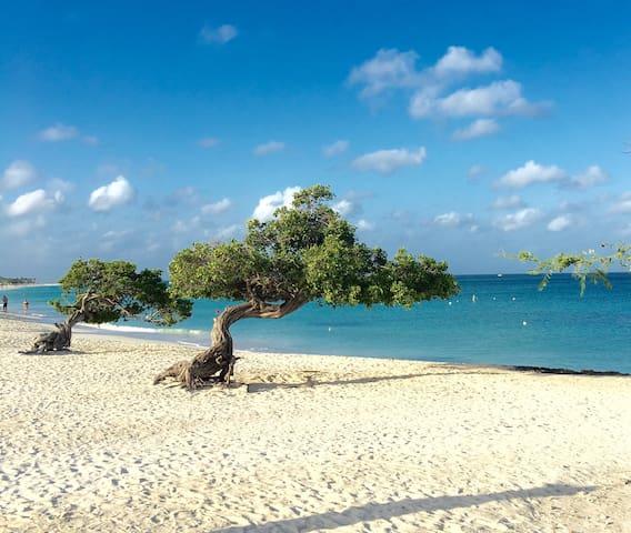 Blue suites 5 , 8 min walk to Marriott beach