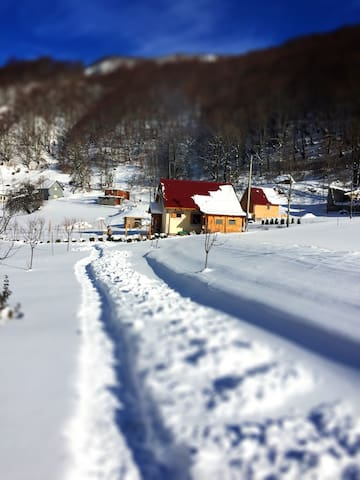 Holiday Home Milica - Kolasin - Casa