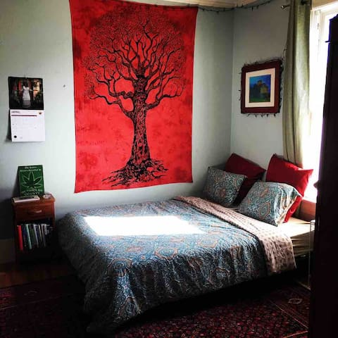420 & Pet Friendly Groovy Room w Private Half Bath