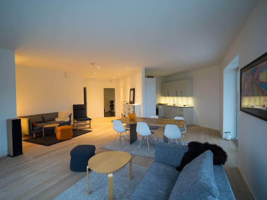 Large livingroom with new designer furniture.