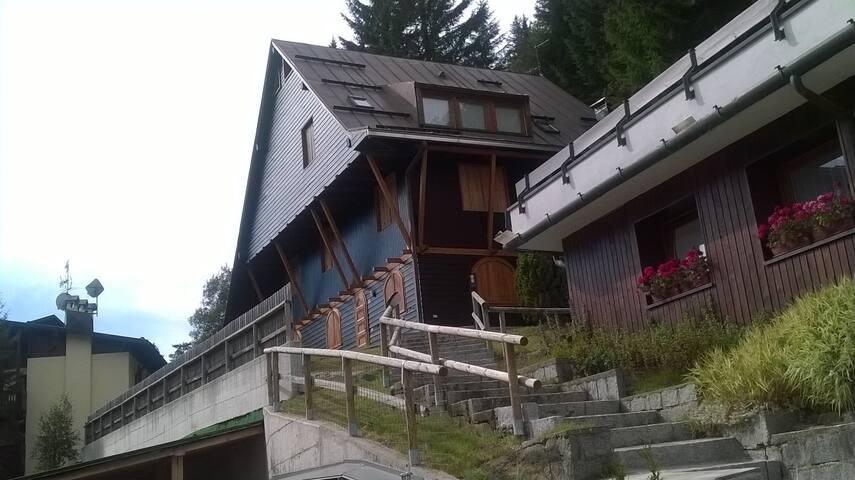 Casa di Legno Serafini - Provincia di Trento - Apartamento