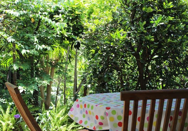 Meublé de charme avec un joli  jardin arboré