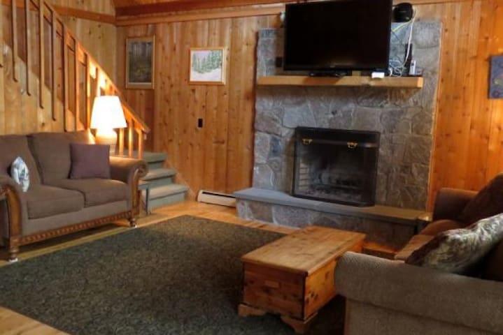 VT Family Ski House - Plymouth - Huis