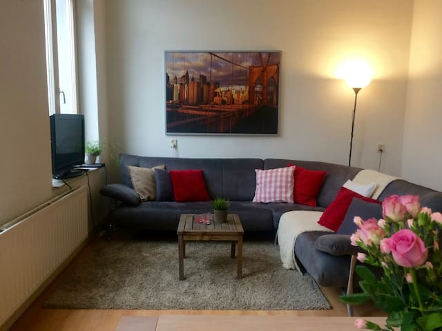 Quiet room in spacious & central apartment - Maastricht - Daire