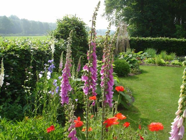 zicht vanuit de tuin