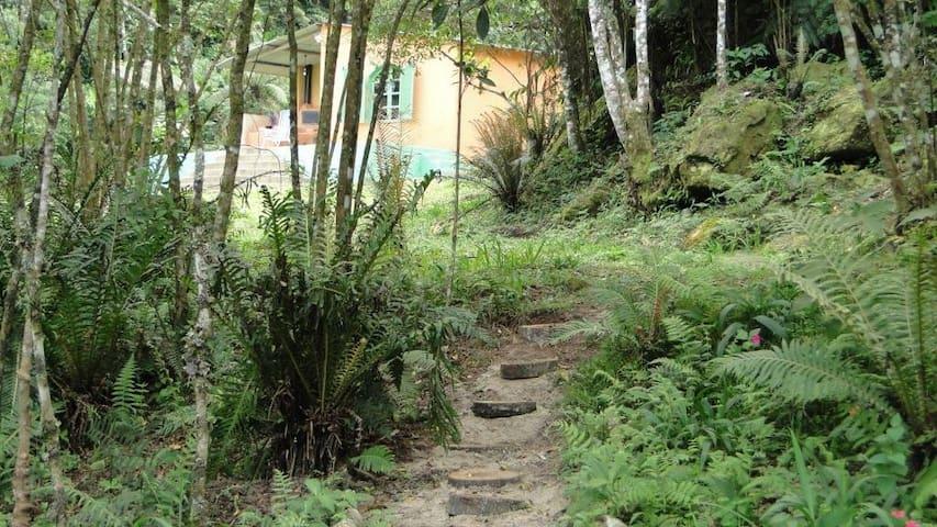 Experiência na Mata Atlântica/SP/BR - São Lourenço da Serra - Bungalow