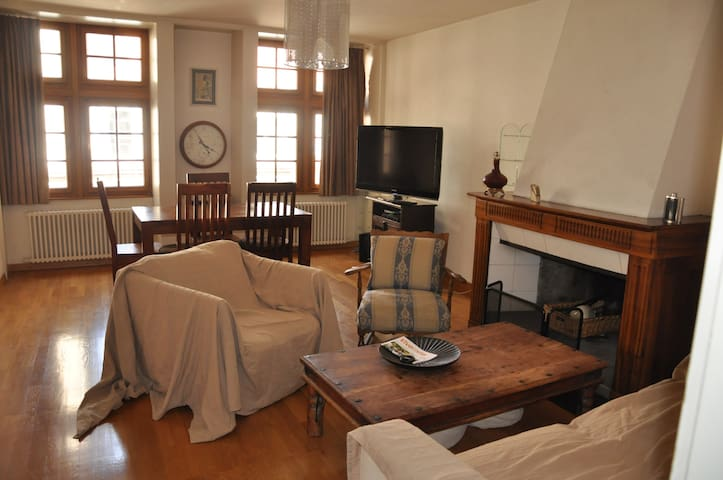 A beautiful spacious flat in Geneva old town