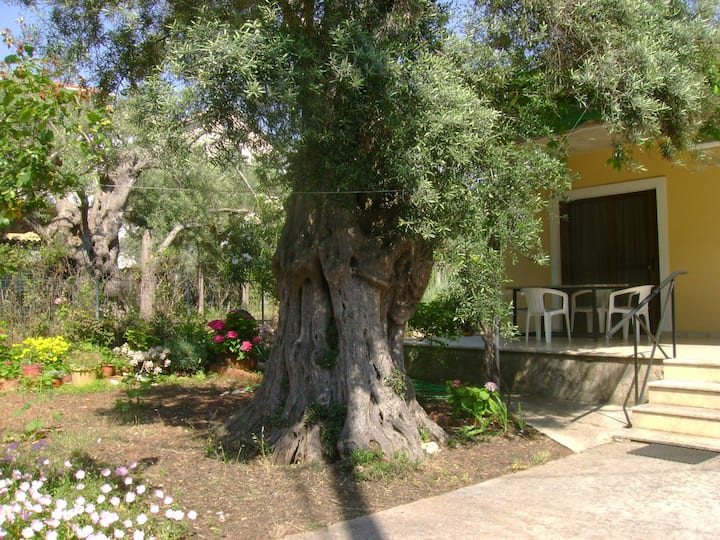 Lefkas house with garden