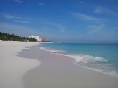 Top Condo - 1 Minute Walk To Atlantis & Beach