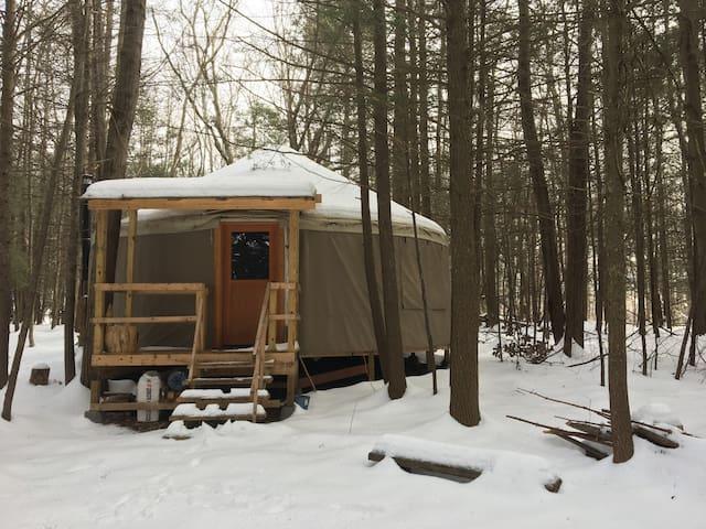 Yurt Upstate NY - Parksville