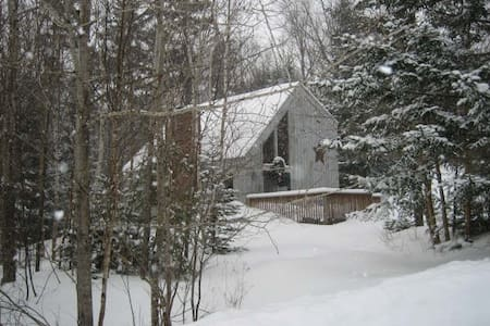 Vermont Chalet Tucked in the Woods - Wilmington - Almhütte