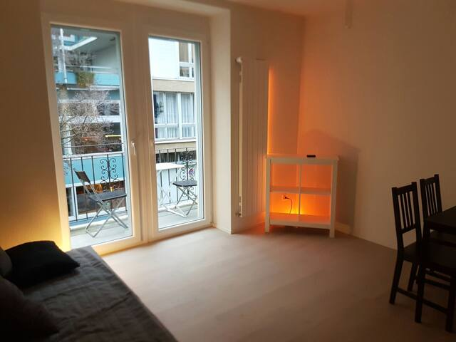 Nice 2 room appartement in center - Zürih - Daire