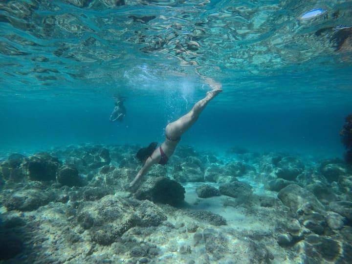Unglaubliche Unterwasserwelt