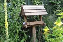 The old bird house at the bottom of the garden