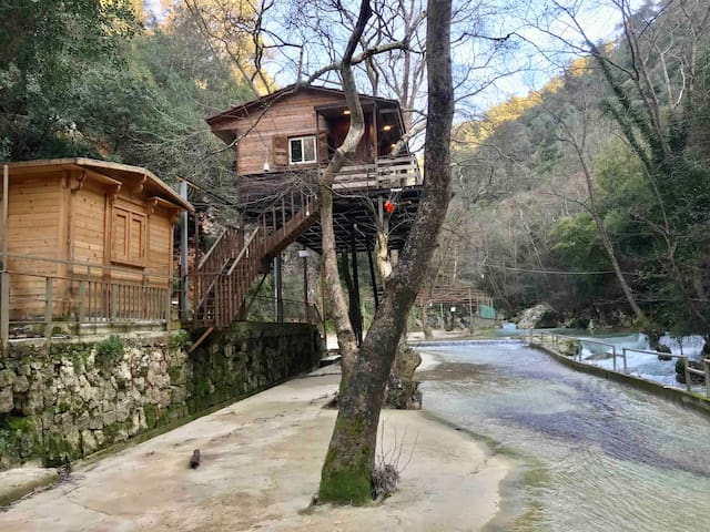 Unique Tree House. One of Lebanons hidden gems !