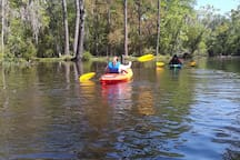 We also offer kayak tours of Pottsburg creek. Go to Airbnb.com and click on Experiences for details.