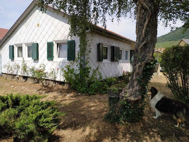 Maison avec jardin dans un quartier calme
