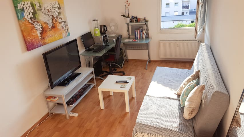 Beautiful Space In Bonn Beuel - Bonn - Apartment