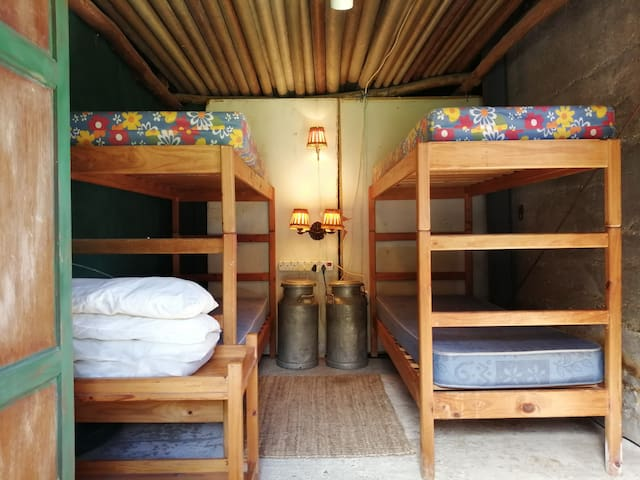 Four bunk beds, double stacked