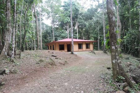 Riverview jungle retreat
