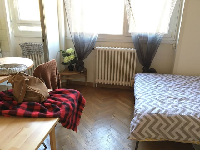 Bright studio with green view - Sainte-Foy-lès-Lyon