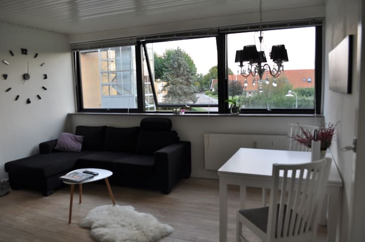 Super cosy apartment in quiet area in Copenhagen - Rødovre - Daire